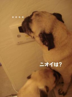 お風呂12