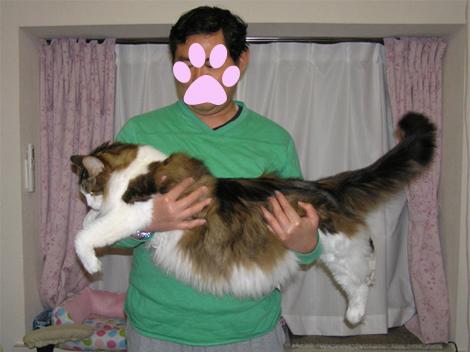 パパちん178cm、90kgぐらい