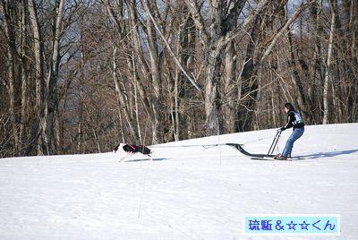 20090215blog3.jpg