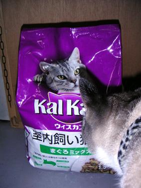 カルカン(室内飼猫用)