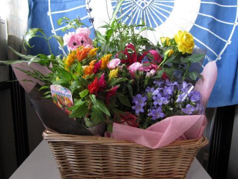 2010 05 08 花のプレゼント.JPG