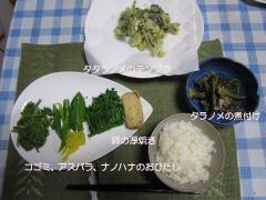 2010 05 17 今日の夕食.JPG
