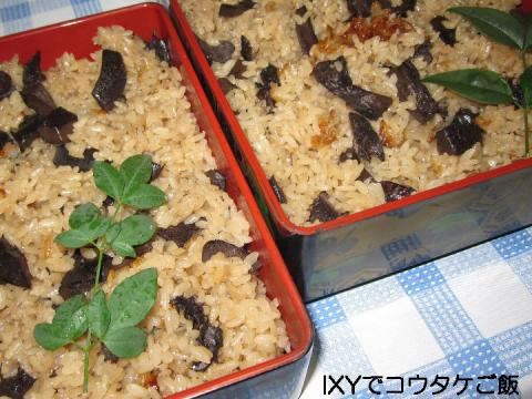 Top2010 10 17 キノコご飯-2.JPG