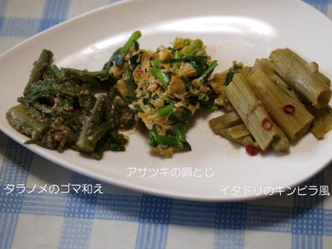 2011 05 20 今朝の山菜料理.jpg