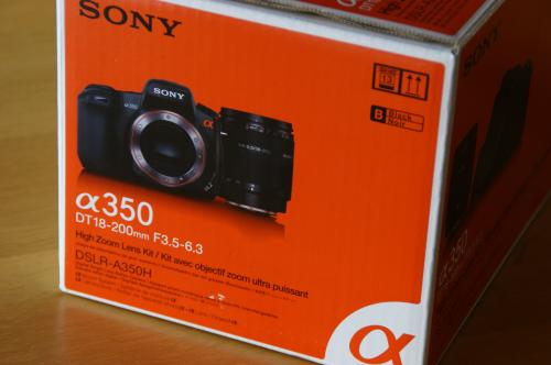 DSC03316_convert_20080827105357.jpg