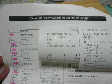 P1220059_convert_20100805042237.jpg