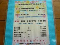 P1250054_convert_20111105203825.jpg