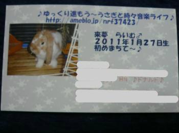 snap_wankosyoukai_2011125182426.jpg