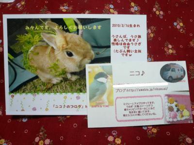 snap_wankosyoukai_201145171244.jpg