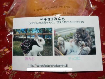 snap_wankosyoukai_2011458348.jpg