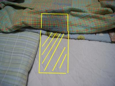 snap_wankosyoukai_20115121242.jpg