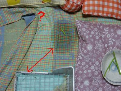 snap_wankosyoukai_2011512843.jpg