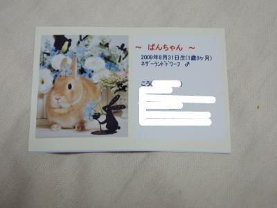 snap_wankosyoukai_20116420133.jpg
