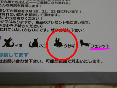 snap_wankosyoukai_201181111630.jpg