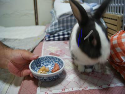 snap_wankosyoukai_2011812457.jpg