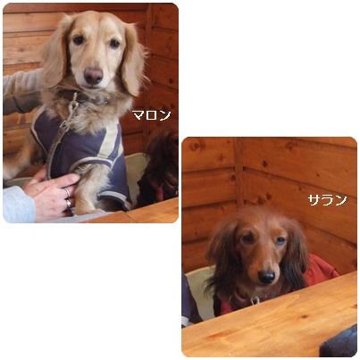 1-29-6.jpg