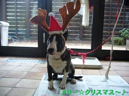 メーリ☆クリスマス~♪