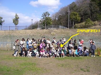 『Bullterriers'10春のオフ会@関西』