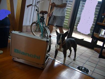 自転車修理!