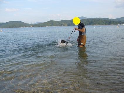 泳ぐ!!!