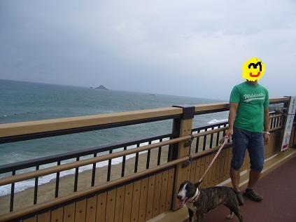 百兎海岸!
