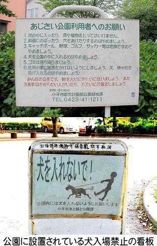 公園に設置されている犬入場禁止の看板