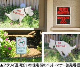 東村山わん友会HAWAII犬フン探しの旅003