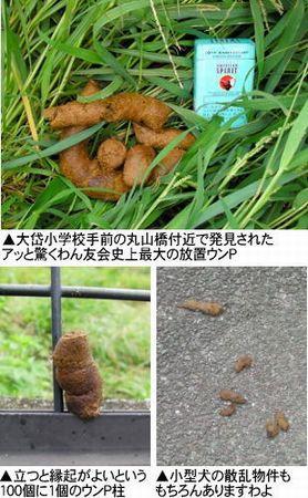 「第10回ドッグウォークin東村山」photo003