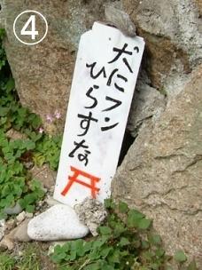 和歌山県の犬フン放置警告看板