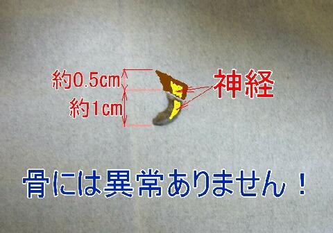 070503-31.jpg