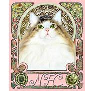 ノルウェージャンの子猫