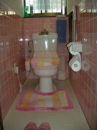 1階 旧トイレの内部