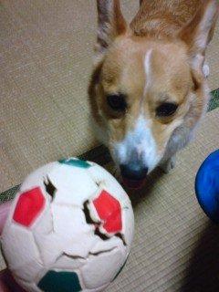 こんなになるまで愛用していたボール