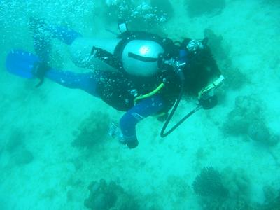 diving.22