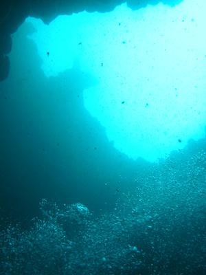 diving.26