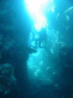 diving.32