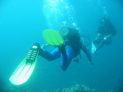 diving.41