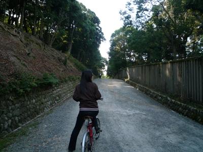 ho-nigatsu
