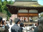 090405平野神社02