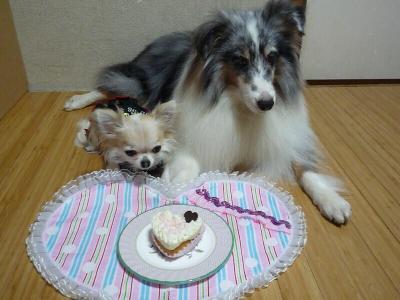 3.ケーキを前に
