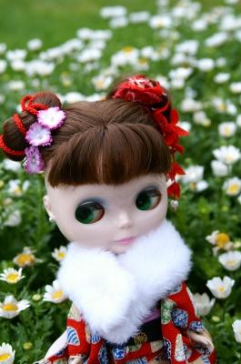 flowershow_001.jpg