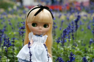 flowershow_002.jpg