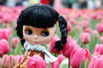 flowershow_005.jpg
