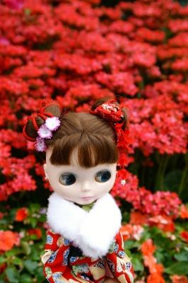 flowershow_007.jpg