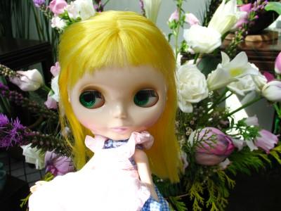 lotus_lor_003.jpg