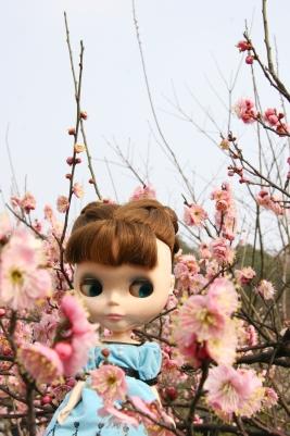 shanghai_poi_007.jpg