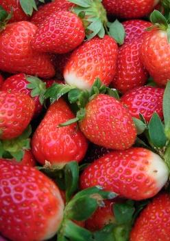 strawberry_001.jpg