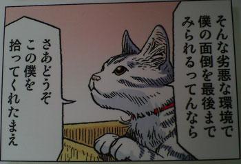 puneko3.jpg