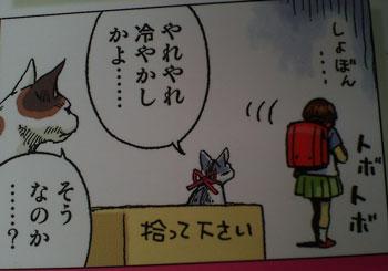puneko4.jpg