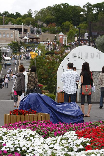 北海道236